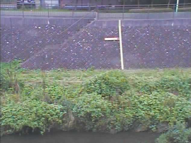 野川鎌田橋野川水位観測所ライブカメラは、東京都世田谷区鎌田の鎌田橋野川水位観測所に設置された野川が見えるライブカメラです。