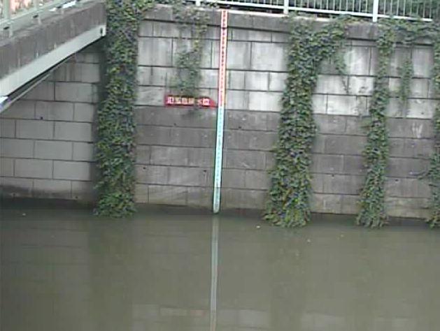 目黒川荏原調節池上流水位観測所ライブカメラは、東京都品川区西五反田の荏原調節池上流水位観測所に設置された目黒川が見えるライブカメラです。
