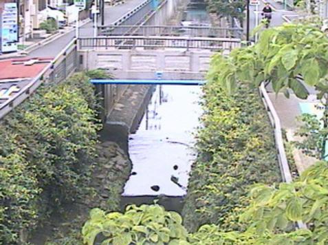 谷沢川丸山橋ライブカメラは、東京都世田谷区中町の丸山橋に設置された谷沢川が見えるライブカメラです。