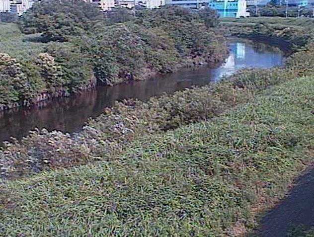 鶴見川落合橋ライブカメラは、神奈川県横浜市緑区の落合橋に設置された鶴見川が見えるライブカメラです。