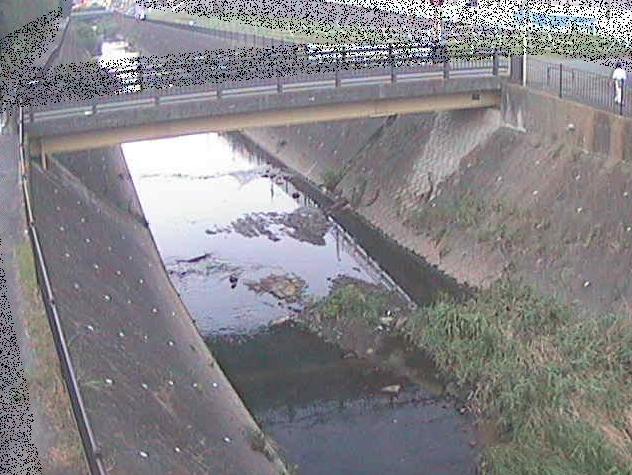 早淵川鍛冶橋ライブカメラは、神奈川県横浜市青葉区の鍛冶橋に設置された早淵川が見えるライブカメラです。