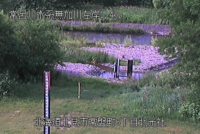無加川北光社観測所ライブカメラは、北海道北見市常磐町の北光社観測所に設置された無加川が見えるライブカメラです。