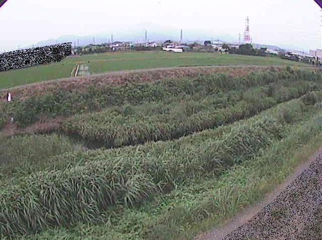 歌川源氏橋ライブカメラは、神奈川県伊勢原市小稲葉の源氏橋に設置された歌川が見えるライブカメラです。