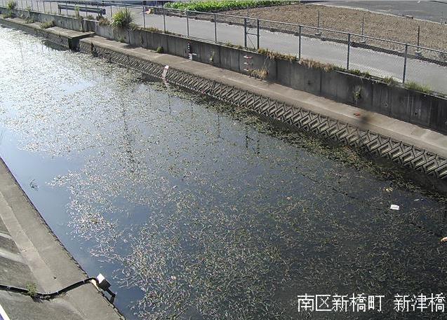 高塚川新津橋ライブカメラは、静岡県浜松市南区の新津橋に設置された高塚川が見えるライブカメラです。