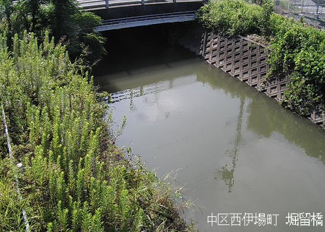 堀留川堀留橋ライブカメラは、静岡県浜松市中区の堀留橋に設置された堀留川が見えるライブカメラです。