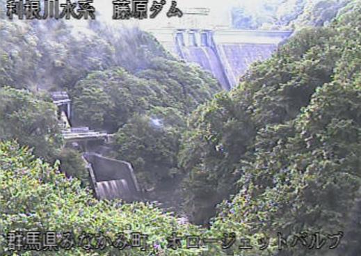 藤原ダムライブカメラは、群馬県みなかみ町藤原の藤原ダムホロージェットバルブに設置された藤原ダムが見えるライブカメラです。