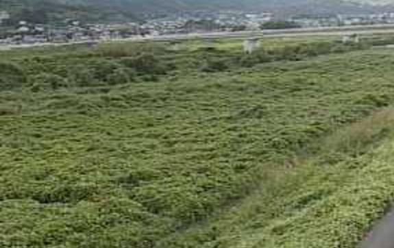 笛吹川桃林橋ライブカメラは、山梨県中央市大田和の桃林橋に設置された笛吹川が見えるライブカメラです。