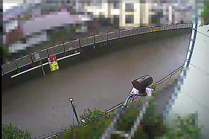 善福寺川丸山橋ライブカメラは、東京都杉並区上荻の丸山橋に設置された善福寺川が見えるライブカメラです。