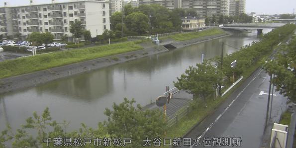 坂川大谷口新田水位観測所ライブカメラは、千葉県松戸市新松戸の大谷口新田水位観測所に設置された坂川が見えるライブカメラです。