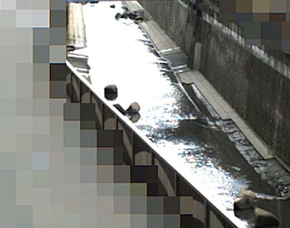 呑川仲池上ライブカメラは、東京都大田区の仲池上に設置された呑川が見えるライブカメラです。