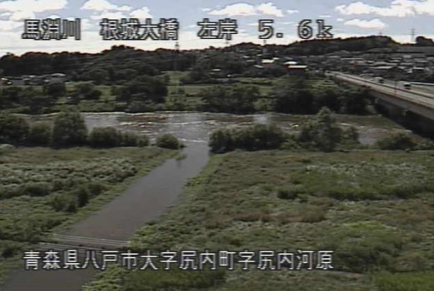 馬淵川根城大橋ライブカメラは、青森県八戸市尻内町の根城大橋に設置された馬淵川が見えるライブカメラです。