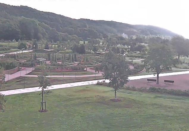 岩見沢バラ園ライブカメラは、北海道岩見沢市志文町の岩見沢バラ園(いわみざわ公園バラ園)に設置されたバラ園が見えるライブカメラです。