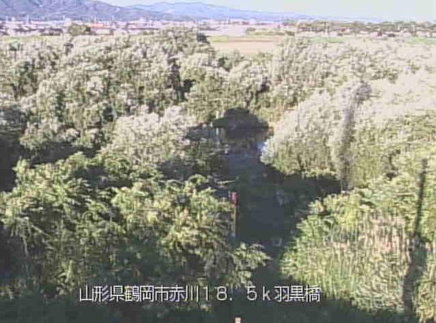 赤川羽黒橋ライブカメラは、山形県鶴岡市羽黒町の羽黒橋に設置された赤川が見えるライブカメラです。