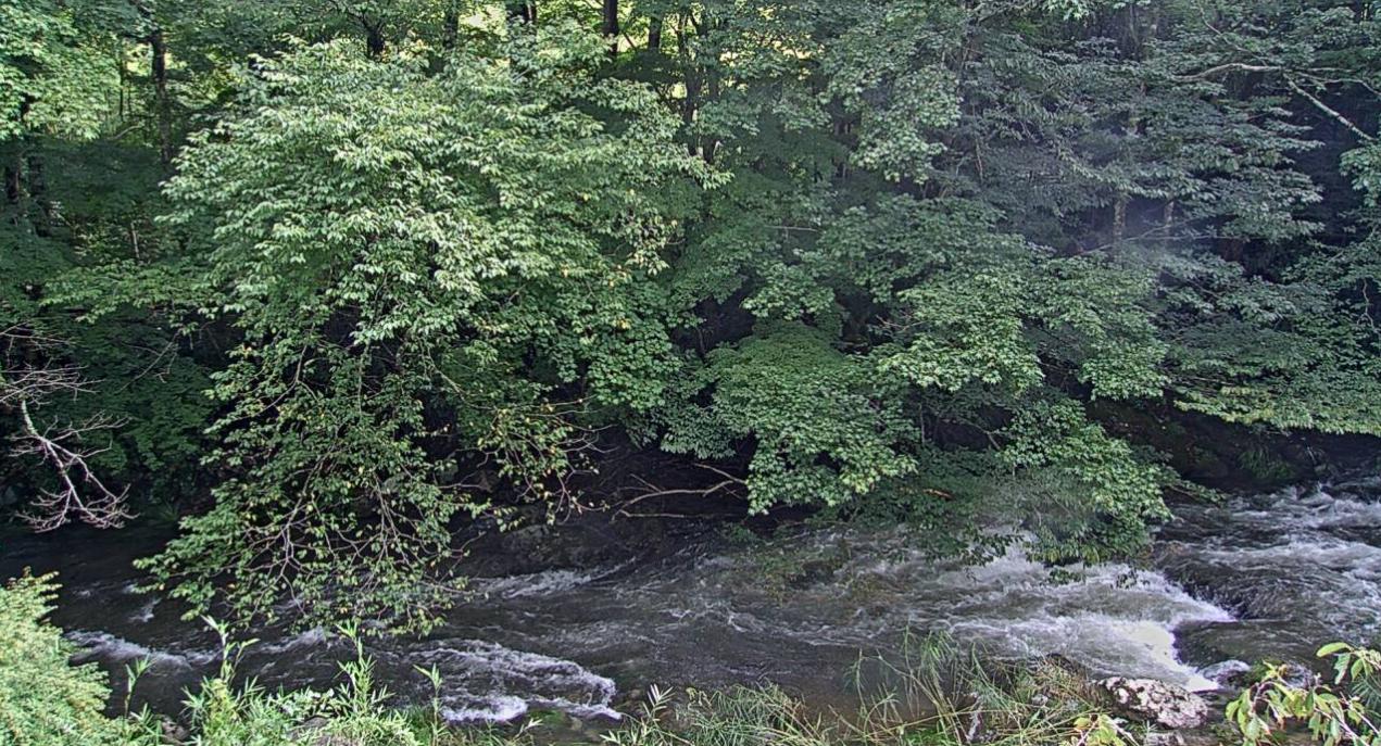 花園川上流ライブカメラは、茨城県北茨城市関本町の花園渓谷に設置された花園川が見えるライブカメラです。