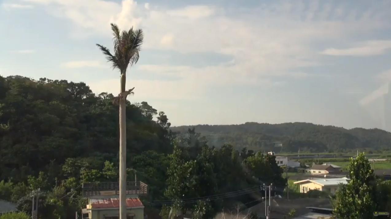 我部祖河スタジオ257ライブカメラは、沖縄県名護市我部祖河の我部祖河スタジオ257(我部祖河Studio257)に設置された名護上空天気が見えるライブカメラです。