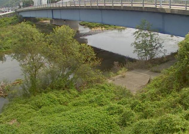 林田川片山ライブカメラは、兵庫県たつの市龍野町の片山(中井橋)に設置された林田川が見えるライブカメラです。