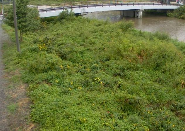 夢前川前之庄ライブカメラは、兵庫県姫路市夢前町の前之庄に設置された夢前川が見えるライブカメラです。