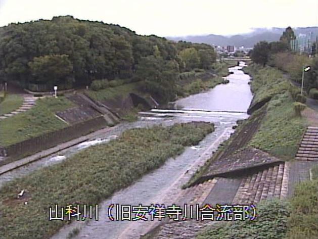 山科川旧安祥寺川合流部ライブカメラは、京都府京都市山科区の旧安祥寺川合流部に設置された山科川が見えるライブカメラです。