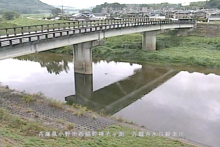 万願寺川万願寺ライブカメラは、兵庫県小野市西脇町の万願寺水位観測所に設置された万願寺川が見えるライブカメラです。