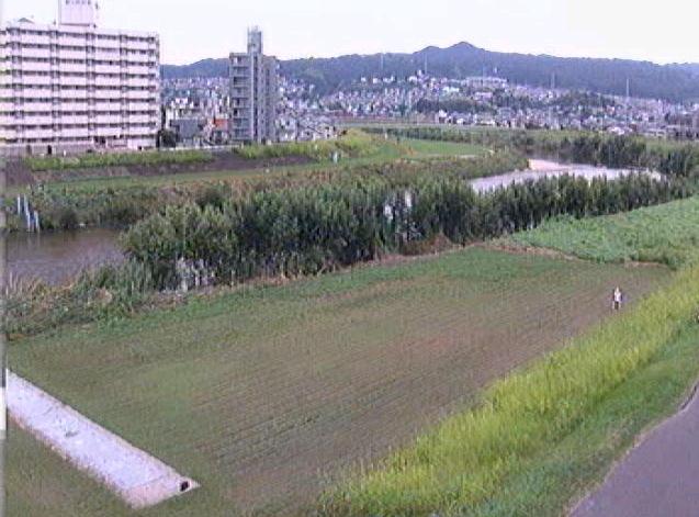 大和川昭和橋下流ライブカメラは、奈良県三郷町勢野東の昭和橋下流に設置された大和川が見えるライブカメラです。