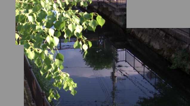 大溝川藤木橋ライブカメラは、佐賀県佐賀市駅前中央の藤木橋に設置された大溝川が見えるライブカメラです。
