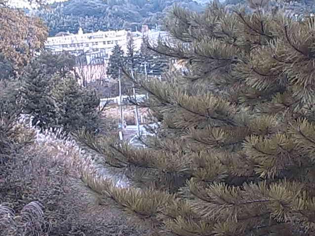 高万迫ライブカメラは、福島県双葉町新山の高万迫に設置された国道6号(陸前浜街道)方面が見えるライブカメラです。