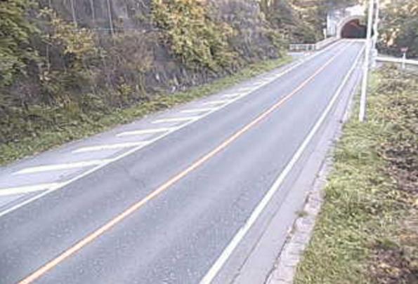 群馬県道36号渋川下新田線赤根トンネルライブカメラは、群馬県みなかみ町下津の赤根トンネルに設置された群馬県道36号渋川下新田線が見えるライブカメラです。