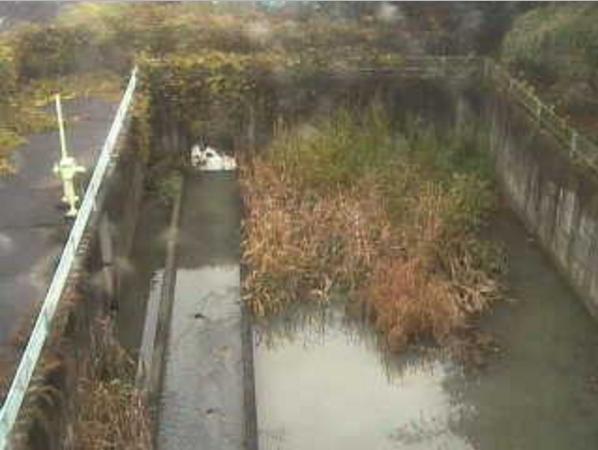 岩間排水機場ライブカメラ(山梨県市川三郷町岩間)