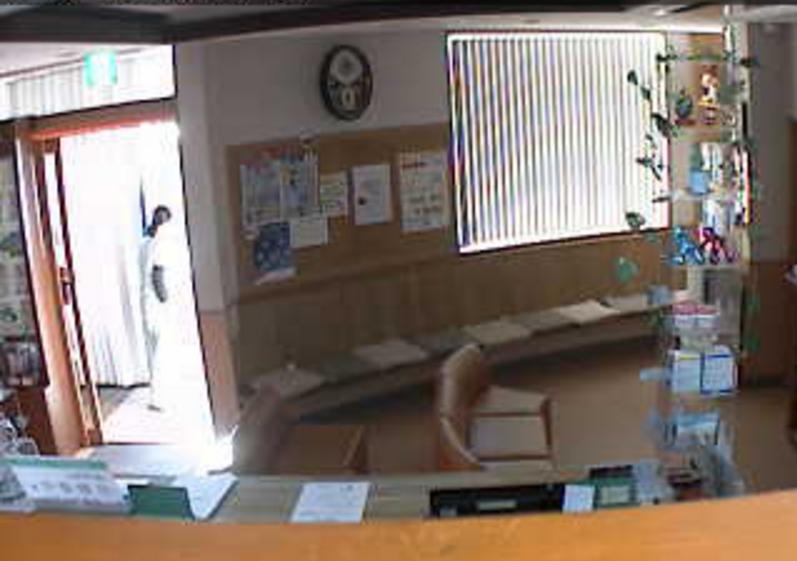 ユウ動物病院ライブカメラ(静岡県御殿場市川島田)