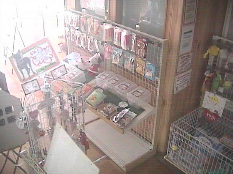 ディアフレンズ佐原店ライブカメラ(千葉県香取市佐原ロ)