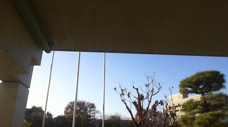 インターネット百葉箱世田谷区立船橋小学校ライブカメラ(東京都世田谷区船橋)