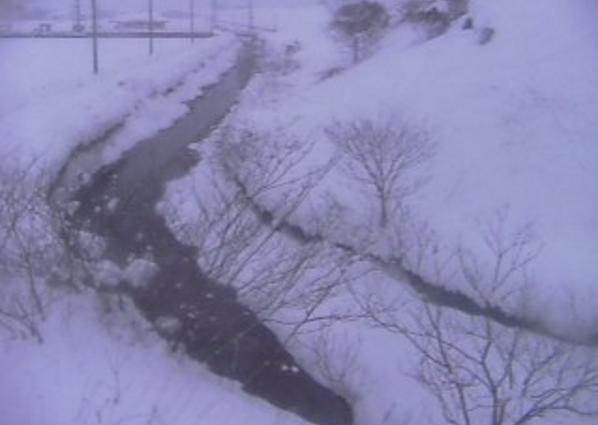 三谷川河原町今在家ライブカメラ(鳥取県鳥取市河原町)