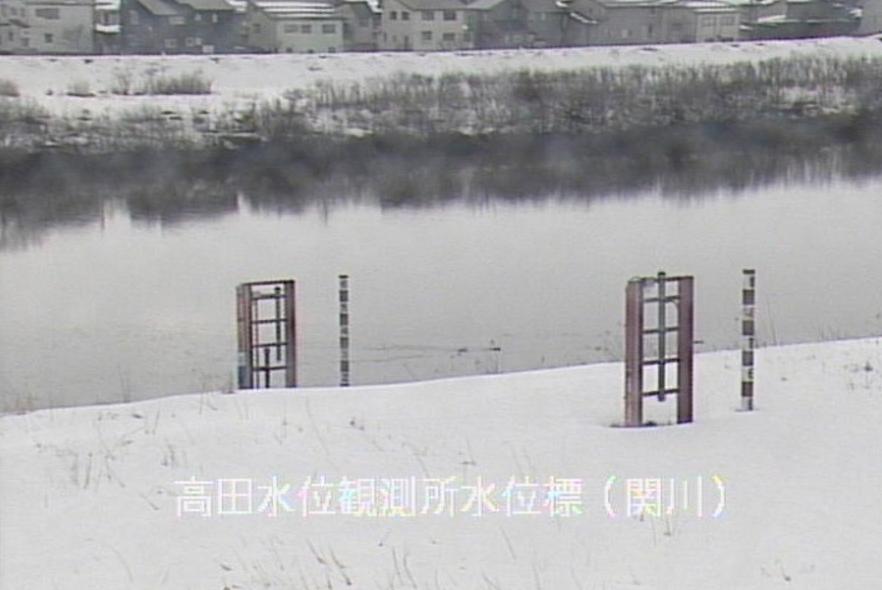 関川高田水位観測所水位標ライブカメラ(新潟県上越市北城町)