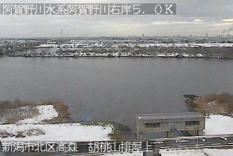 阿賀野川胡桃山ライブカメラ(新潟県新潟市北区)
