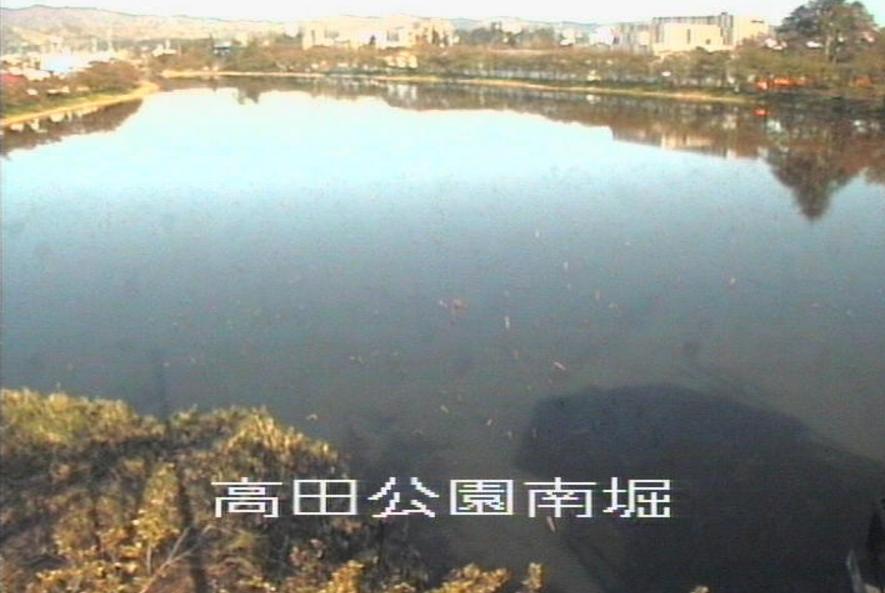 関川高田公園南堀ライブカメラ(新潟県上越市本城町)