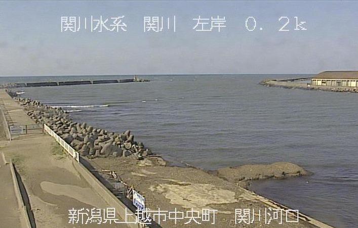 ライブ カメラ 海 新潟