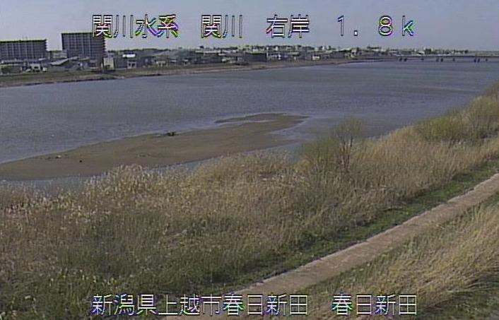 関川関川大橋下流ライブカメラ(新潟県上越市春日新田)