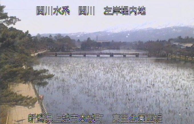 関川高田公園西堀ライブカメラ(新潟県上越市本城町)