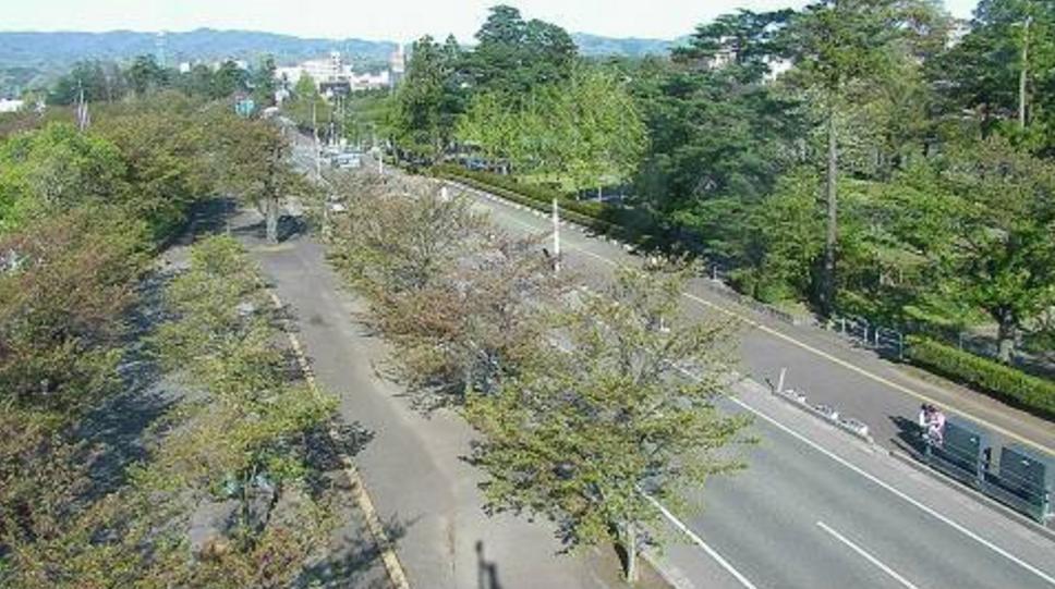 高田公園陸上競技場横夜桜ライブカメラ(新潟県上越市本城町)