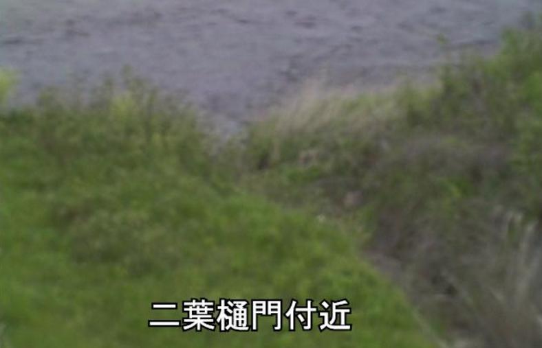 豊川二葉樋門ライブカメラ(愛知県豊川市三上町)