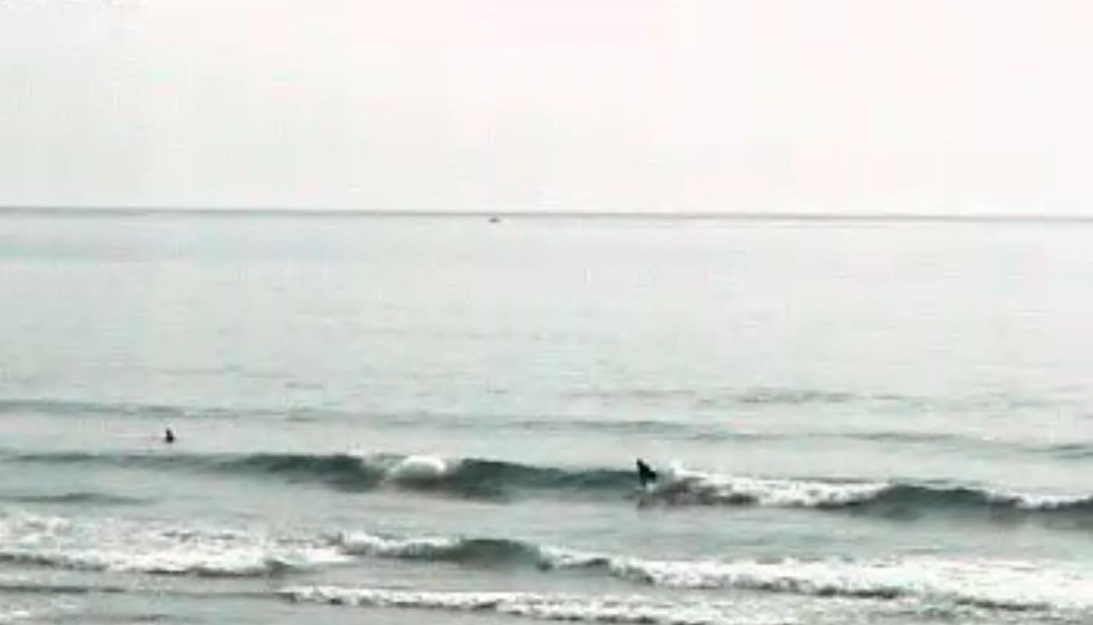 iinami金ヶ浜ビーチライブカメラ(宮崎県日向市平岩)