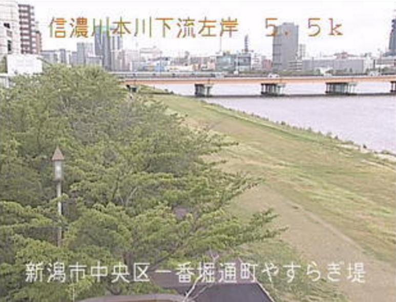 信濃川やすらぎ堤緑地ライブカメラ(新潟県新潟市中央区)