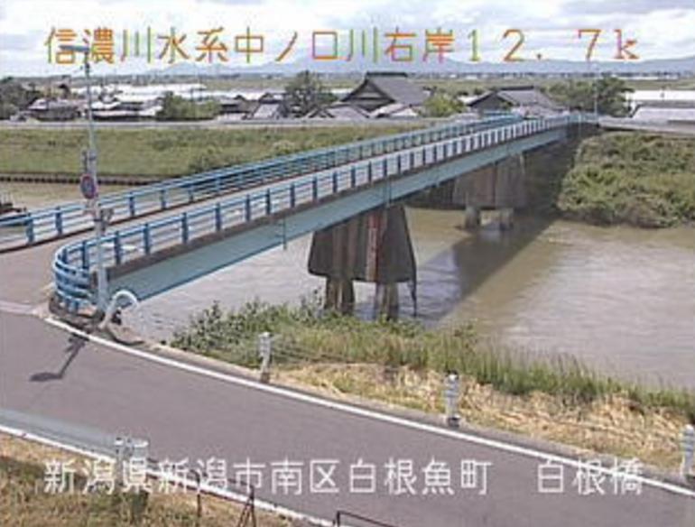 中ノ口川白根橋ライブカメラ(新潟県新潟市南区)