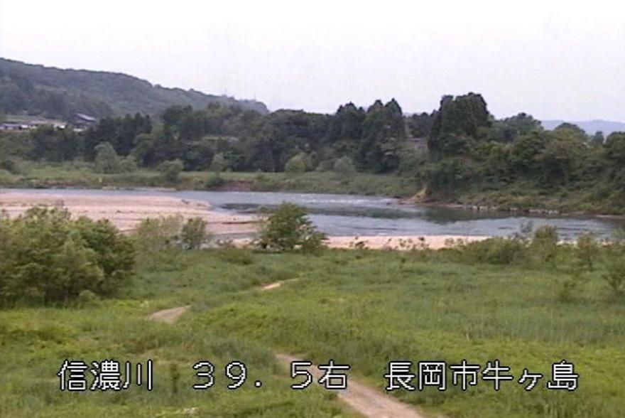 信濃川牛ケ島ライブカメラ(新潟県長岡市川口牛ケ島)
