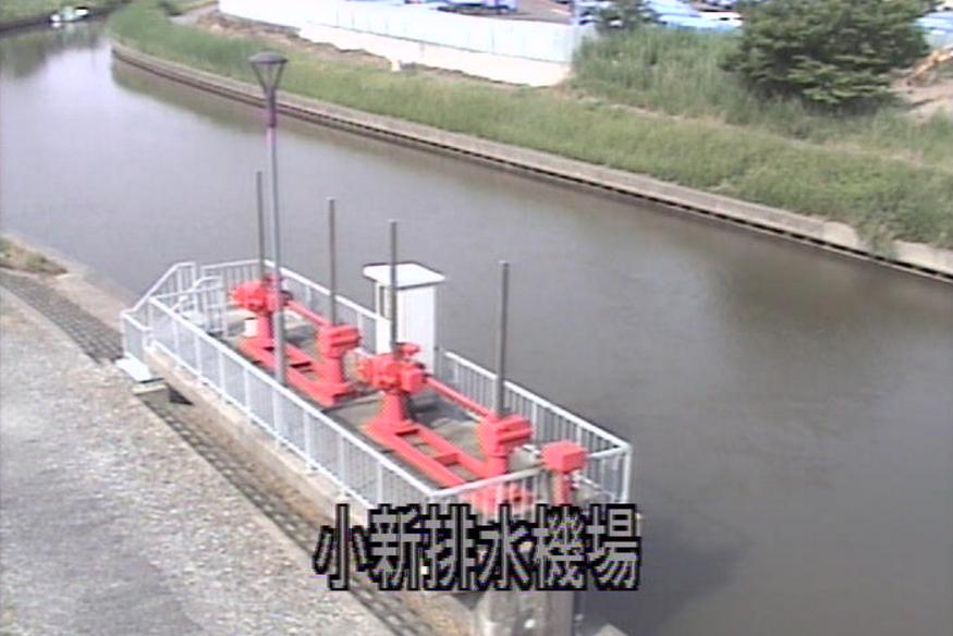 西川小新排水機場ライブカメラ(新潟県新潟市西区)