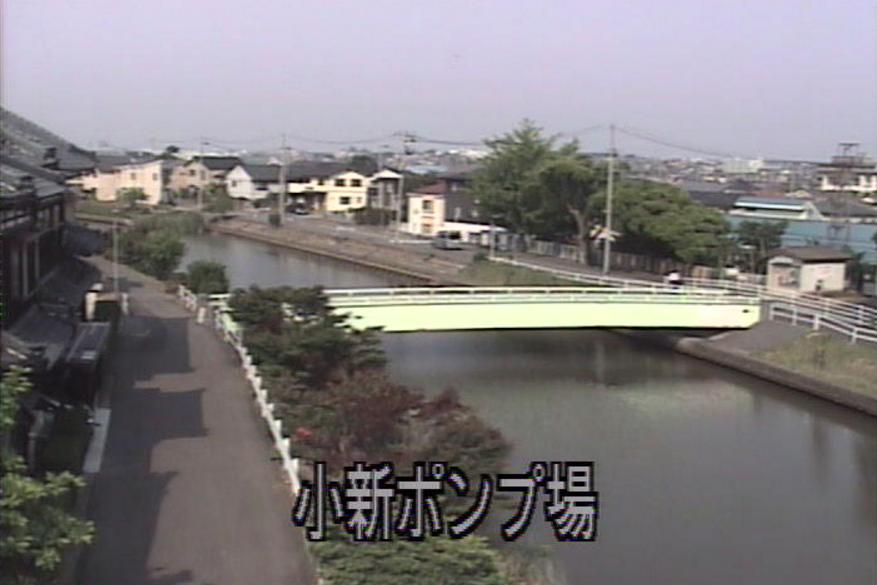 西川小新ポンプ場ライブカメラ(新潟県新潟市西区)