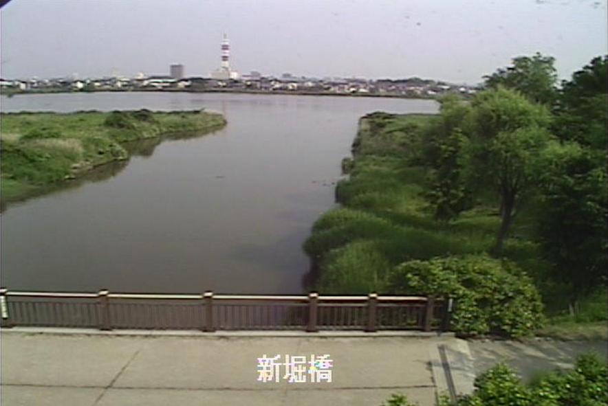 鳥屋野潟新堀橋ライブカメラ(新潟県新潟市中央区)