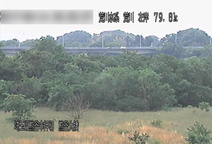 荒川熊谷大橋ライブカメラ(埼玉県熊谷市押切)