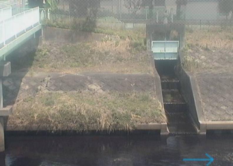 芳川芳川北小学校ライブカメラ(静岡県浜松市南区)