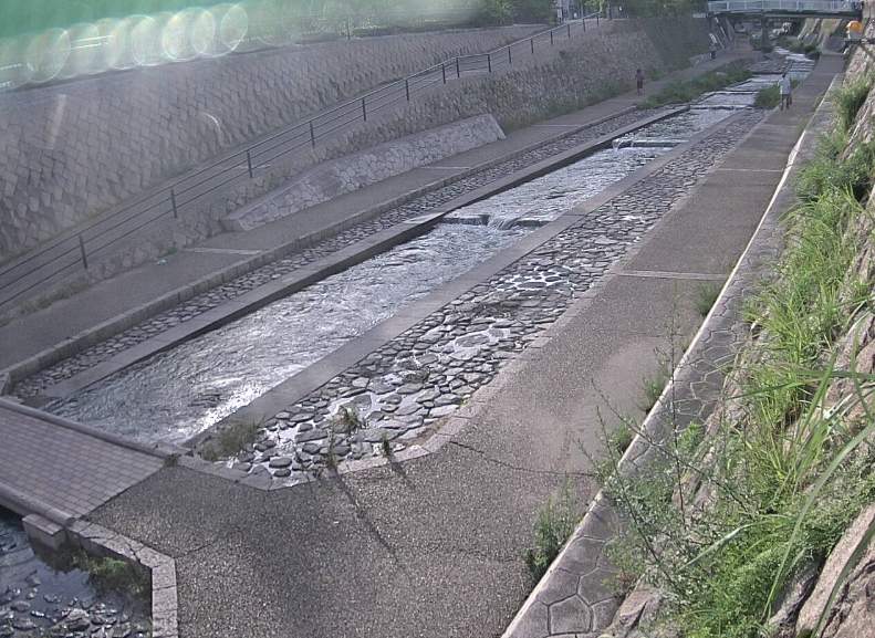 都賀川国道43号付近ライブカメラ(兵庫県神戸市灘区)